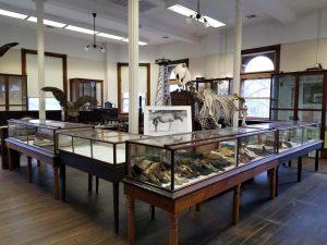 Working Men's Institute Museum